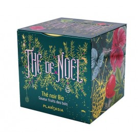 THE DE NOEL FRUITS DES BOIS BIO